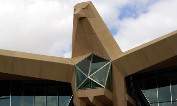El imponente halcón de la casa club