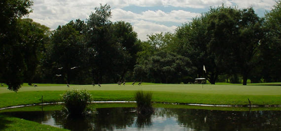 El Royal Johannesburg & Kensington Golf Club, ejemplo de respeto medioambiental