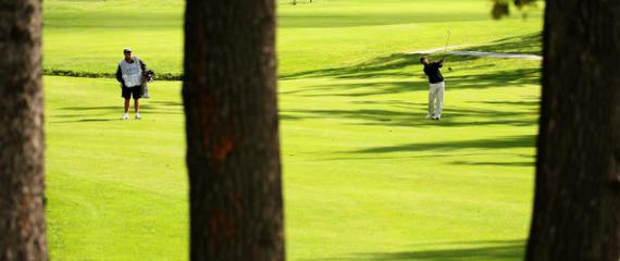 Perogrullada del día: no te salgas del camino, querido golfista