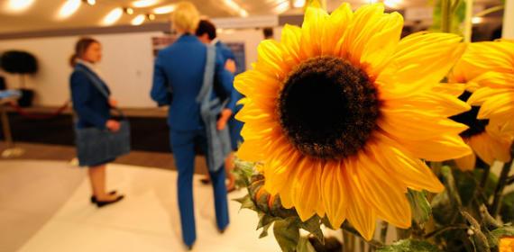 KLM Open 2011, un torneo 100% biodegradable y biosostenible