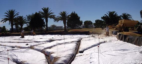 Apertura de las zanjas de drenaje en uno de los greenes