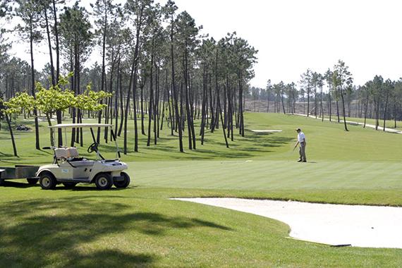 Vista de un hoyo del Campo de Golf Meis